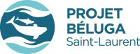 St. Lawrence Beluga Project