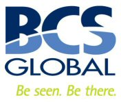 BCS Global Networks Ltd
