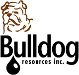 Bulldog Resources Inc.
