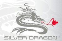Silver Dragon Resources Inc.