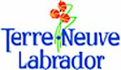 Gouvernement de Terre-Neuve-et-Labrador