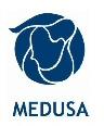 Medusa Mining Limited