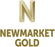Newmarket Gold Inc.