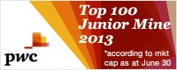 PwC Top 100 Junior Mine 2013