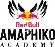 Red Bull Amaphiko Academy