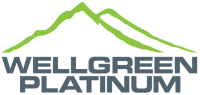 Wellgreen Platinum Ltd.